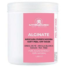 Algen Peel off Maske